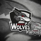 Sneaky_Wolves_Desktop_Logo_Wallpaper_1920x1080